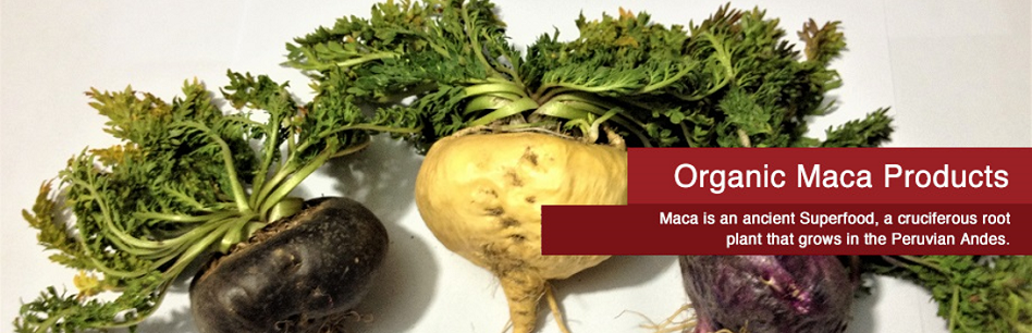 Maca Products - 3 Roots